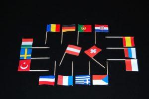 Käsepicker Länderfahnen