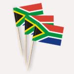 Südafrika Käsepicker Minifähnchen Zahnstocherfähnchen